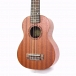 Looking for a good Ukulele?? For children and adults.  Good Quality 21