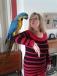 cute macaw parotes for adoption