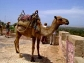 welcom to morocco