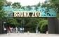 Rainforest Lumina rain forest at Zoo cheap ticket  discount Bird Park Night Safari River Safari Zoo