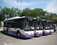 Singapore Sightseeing Bus Tours