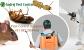 Pest Control Gurgaon   Annual Maintenance Service