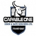 Capable One Door & Gate Services Ltd