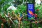 Bird Park cheap ticket discount Zoo River Safari Night Safari Aquarium Universal studios adventure c
