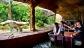 River Safari cheap ticket discount Boat ride Amazon boat Panda view Zoo Bird Park Night Safari Aquar