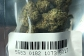 Buy weed online uk legally
